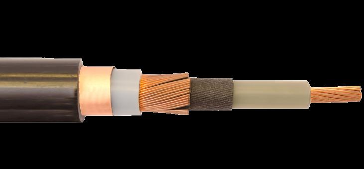 Multi-Conductor Cable
